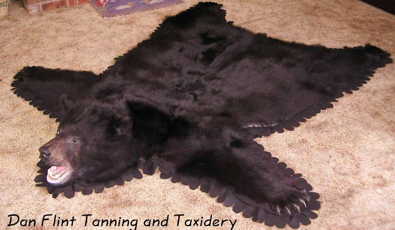 black-bear-rug-dan-flint-tanning-and-taxidermy-phone-250-489-3020