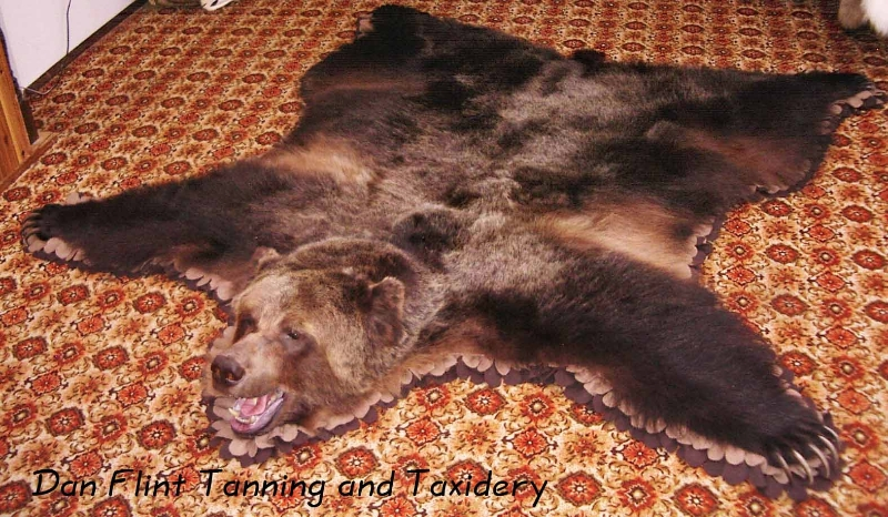 grizzly-rug3-dan-flint-tanning-and-taxidermy-phone-250-489-3020