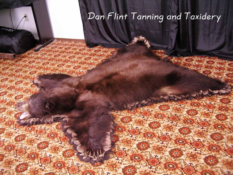 grizzly-rug5-dan-flint-tanning-and-taxidermy-phone-250-489-3020